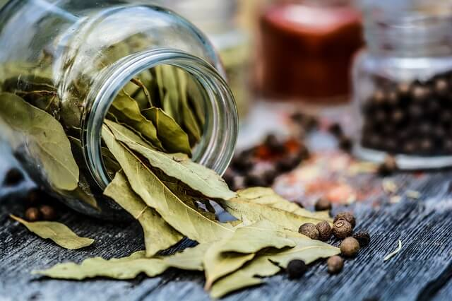 bay-leaves-kitchen-tips-thehomesinfo